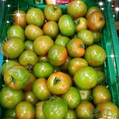 pomodori buoni per te