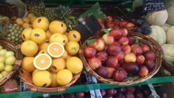 frutta dok
